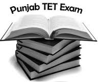 pstet exam answer key