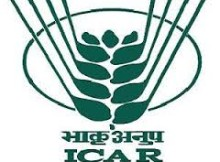 icar recruitment