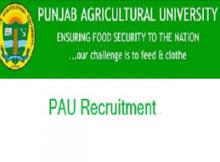 punjab agriculture university