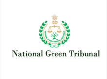 ngt cell recruitment