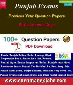 punjab previous papers