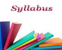 primary teachers syllabus