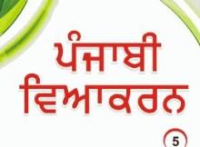 Punjabi grammar questions